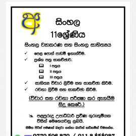 Grade 1-4, Grade 5, Grade 6-9, O/l Sinhala, French, Sinhala Literature, Sinhala Language & Literature Classes In Colombo