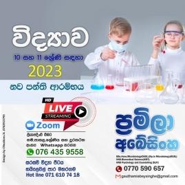Grade 6-9, O/l Classes In Colombo